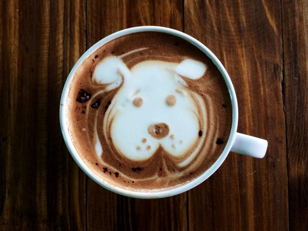 コーヒー1杯でペットを幸せに