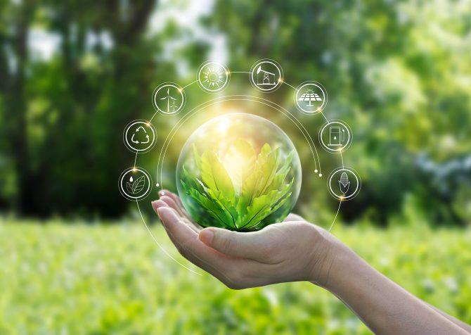 地球保全を第一に考えるブランドが支持される、若い消費者とサステナビリティトレンド