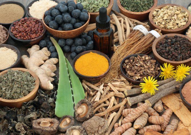 アメリカの食品業界における健康トレンド:アダプトゲン